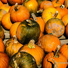 Pumpkins for sale in autumn