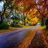 Fall colours downtown Oakville, Ontario, Canada