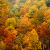 Fall Foilage along the scenic Mohawk Trail in Massachusetts,USA