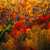 Fall in Mohawk Trail, Massachusetts, USA