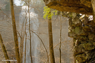 There was a lot of mist in the air at the foot of Fall Creek Falls, so I decided to keep my distance and not risk ruining my camera.