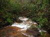 OLYMPUS DIGITAL CAMERA down stream