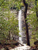 OLYMPUS DIGITAL CAMERA   Piney Creek Falls