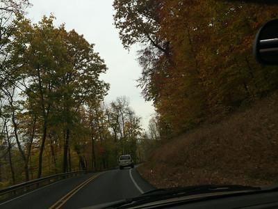 Fall Foliage 13