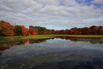 Fall Foliage Wantagh Twin Lakes and Massapequa Park