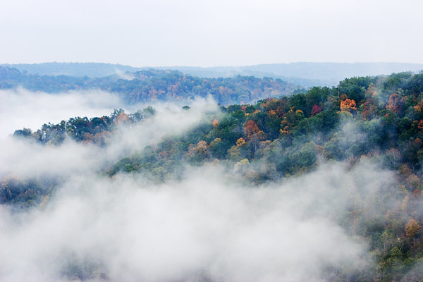 Fall Foliage at Big South Fork National Recreation Area