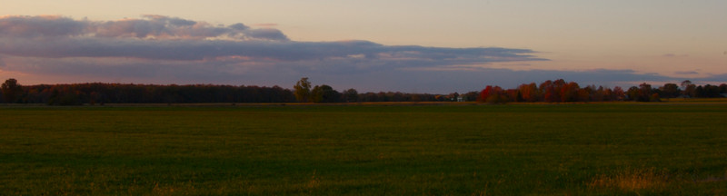 Farmland Foliage Sunset
