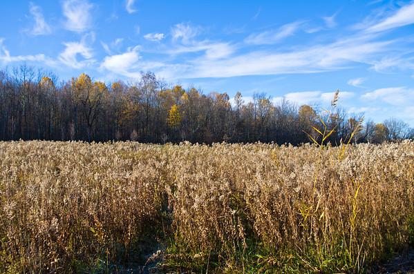 Fall Hiking Spree 2011