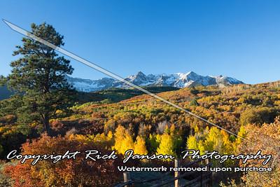 Fall Leaves in Colorado September 2013