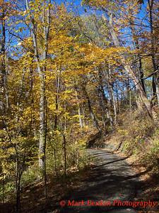 Path through the Color