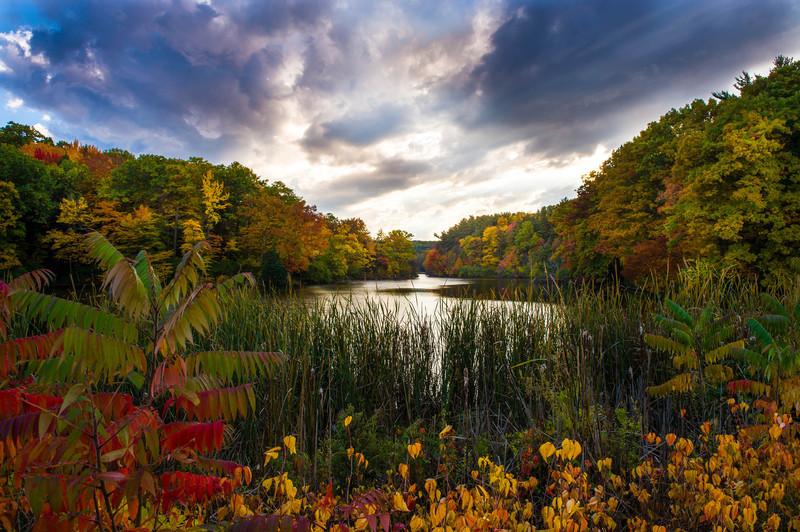 Eastman Pond