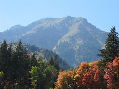 Fall in Utah 2009