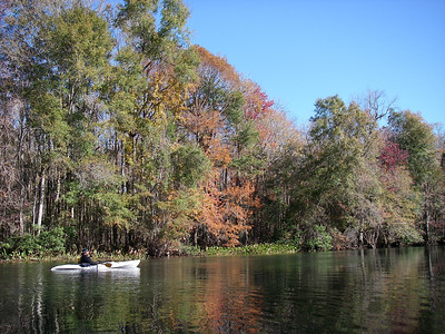 Fall Colors on the Wakulla River