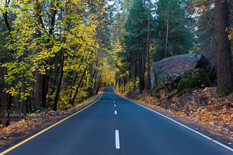Southside Drive in Yosemite National Park, in fall.
