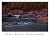 Fall-DSC_6578-18x24-Gallery