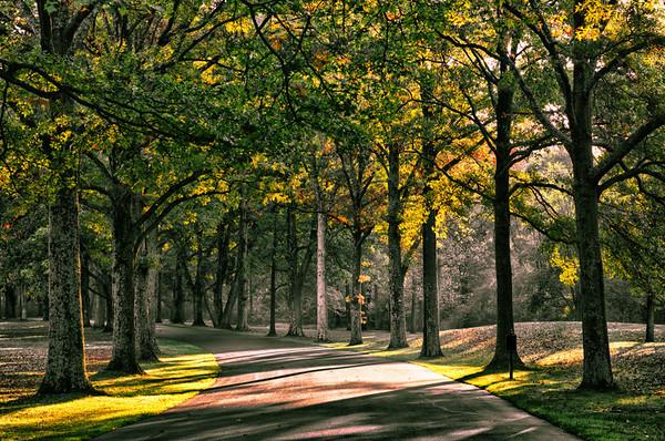 Morning light shines on the entrance driveway to the TPC Jasna Polana golf club outside Princeton, NJ.