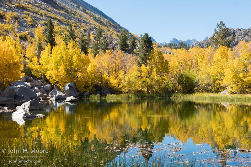 Reflections in the fishing pond near Cardinal Village Resort.  Aspendell, California, USA