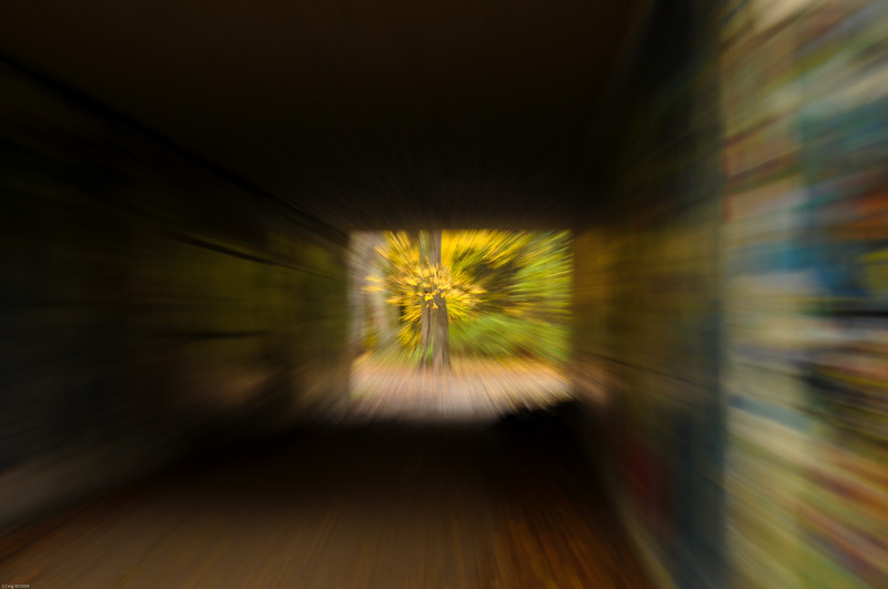 Tunnelblick / Tunnel Vision