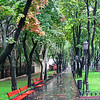 Park benches in the rain, Odessa City Park