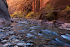 A small rapids with fall trees on the opposite shore, along the Virgin River in Zion National Park.