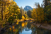 Half Dome reflected in the Merced River.  Yosemite National Park.