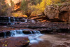 Fall color at Archangel Falls along the route to The Subway in Zion National Park.