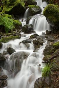 Spring at Cataract Falls