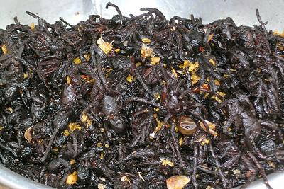 Phnom Penh - Fried Tarantula
