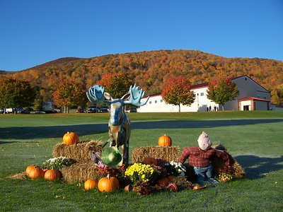 Southern Vermont College - Fall 2008