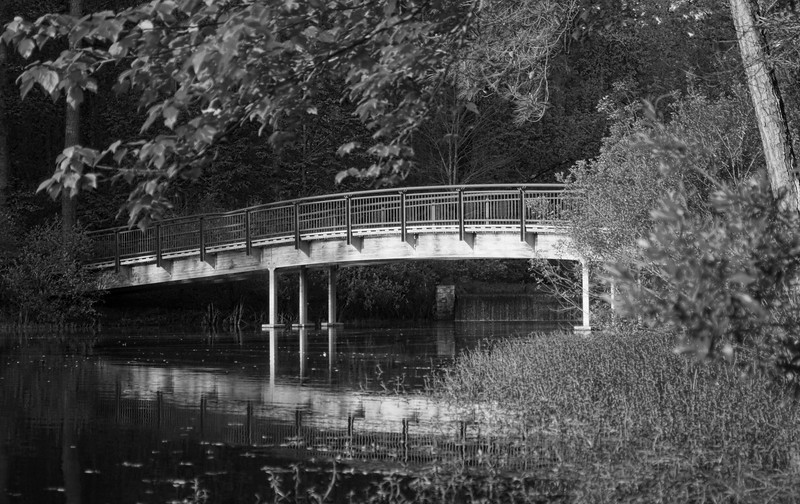 black and white bridge in springtime