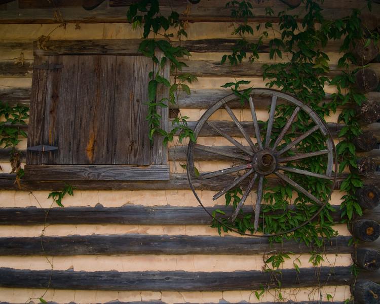Ivy and wagon wheel at Tannehill