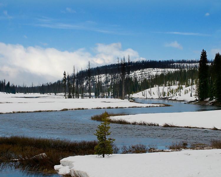 Southern Yellowstone
