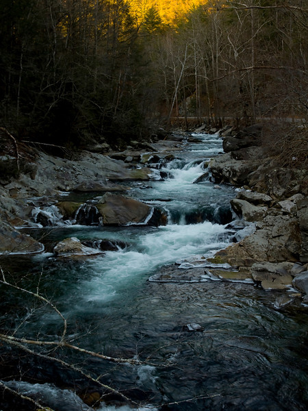 Cold creek in the Smokies
