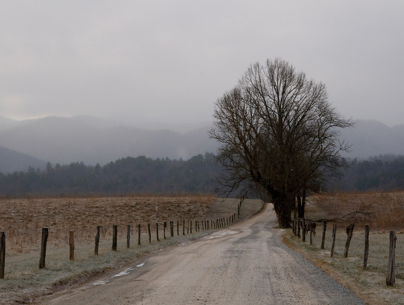 Road in Cades Cove