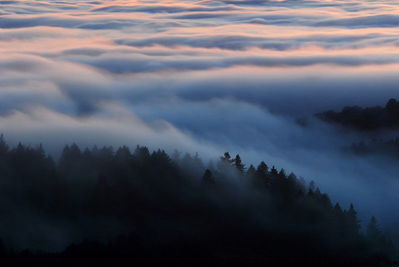 From Black Mountain in Montebello Open Space Preserve, California, well after sunset. Fog from the Pacific Ocean is rolling over the Santa Cruz mountains.