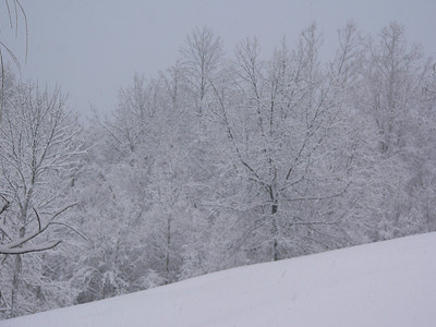 Feb. 2010 snowfall home photos
