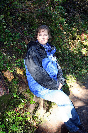 Someone had cut a seat out of a stump along the trail. Lorinda stoped to try it out.