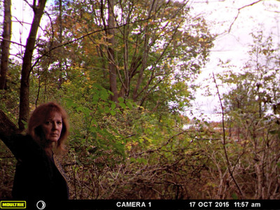 Field Cam