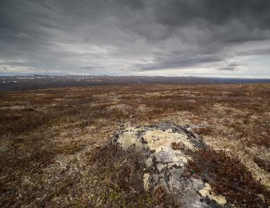 Tundra at Utsjoki.