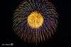 fireworks-5426