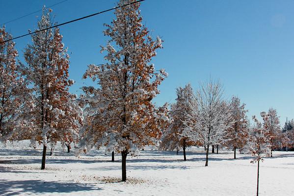 First Snow Nov 2015