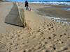 Brielle Beach Nov 11  31131