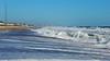 Brielle Beach Nov 11  31090