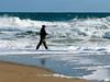 Brielle Beach Nov 11  31156