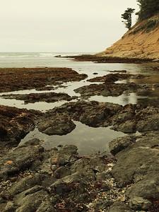 Fitzgerald Marine Reserve 072718  20