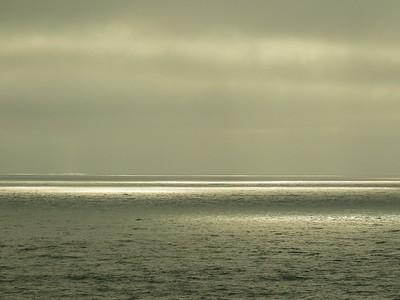 Fitzgerald Marine Reserve 072718  75