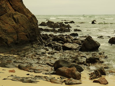 Fitzgerald Marine Reserve 072718  05