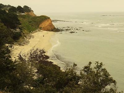 Fitzgerald Marine Reserve 072718  37