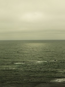 Fitzgerald Marine Reserve 072718  39