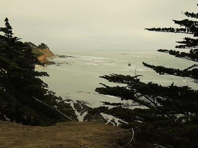 Fitzgerald Marine Reserve 072718  68
